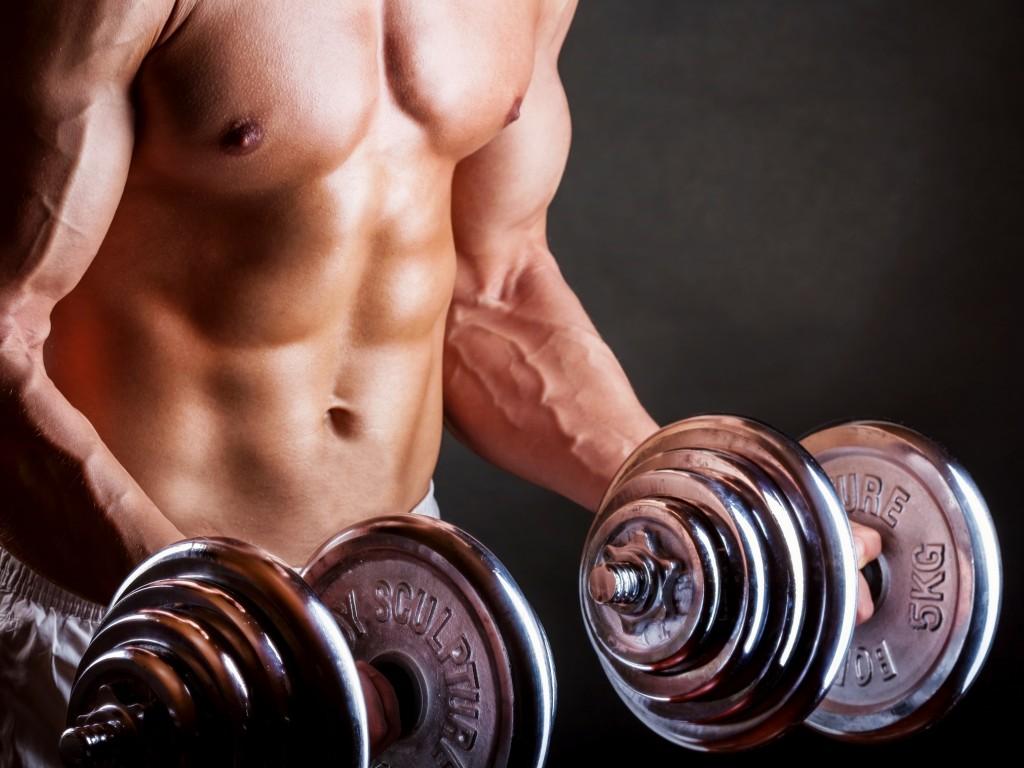איך לעלות במסת השריר בצורה האפקטיבית ביותר